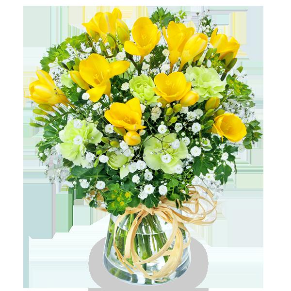 フリージア 春の花贈り特集2021