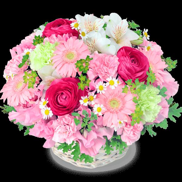 春の誕生日特集