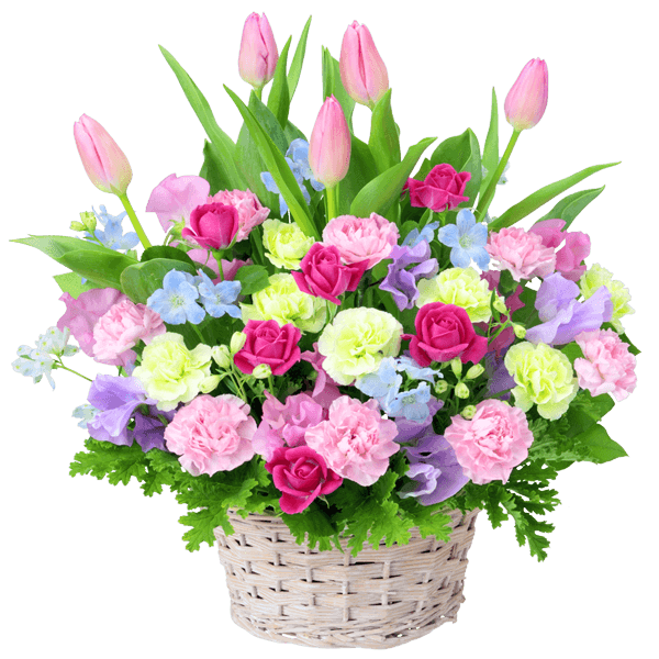 チューリップの<br>ギフト|花キューピットの春の花贈りにおすすめ!人気のプレゼント特集 2021