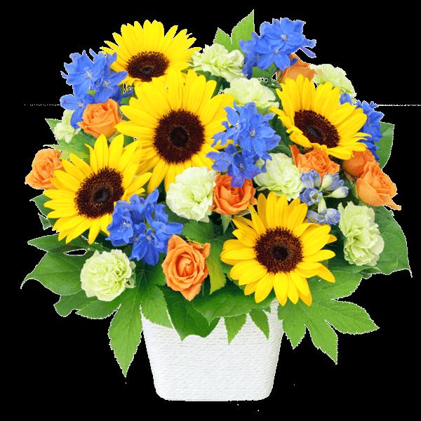 父の日<br>おすすめランキング|花キューピットの父の日におすすめ!人気のプレゼント特集 2020
