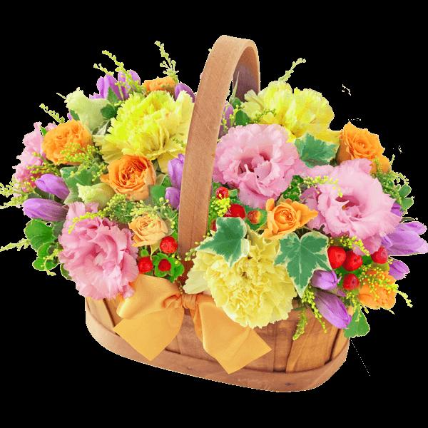 りんどうのギフト りんどうのギフト 長寿と健康を願う花|花キューピットの敬老の日特集 2020
