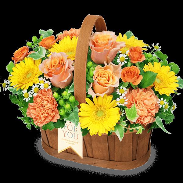オレンジ系の花 |いい夫婦の日特集2020