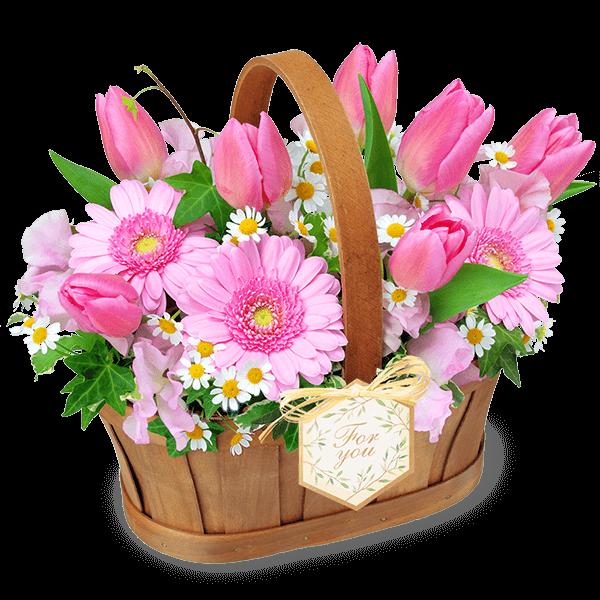 ピンク色・赤色の<br>チューリップ|花キューピットのチューリップにおすすめ!人気のプレゼント特集 2021