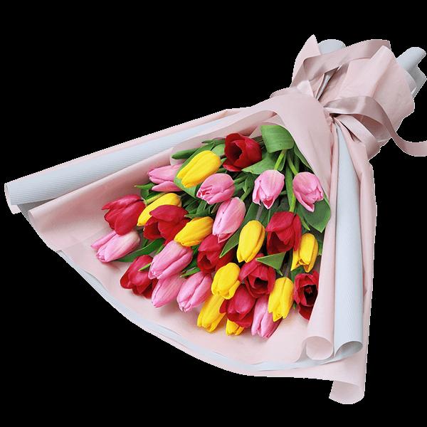 カラフルなチューリップ|花キューピットのチューリップにおすすめ!人気のプレゼント特集 2021