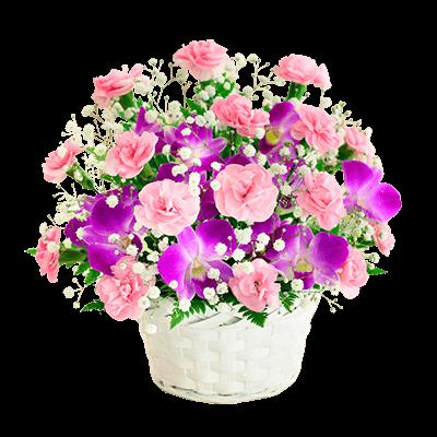 迷ったらこちら 母の日ランキング|花キューピットの母の日におすすめ!人気のプレゼント特集 2019
