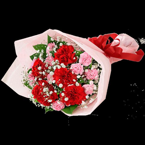 母の日の定番ギフト 赤いカーネーションを贈る|花キューピットの母の日におすすめ!人気のプレゼント特集 2021