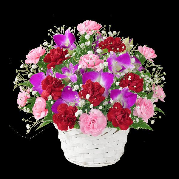 ボリューム満点の花」 毎年人気の母の日プレゼント|花キューピットの母の日におすすめ!人気のプレゼント特集 2019
