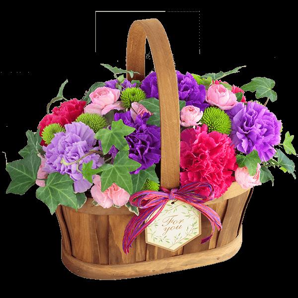 花言葉は「永遠の幸福」 ムーンダストを贈る|花キューピットの母の日におすすめ!人気のプレゼント特集 2021