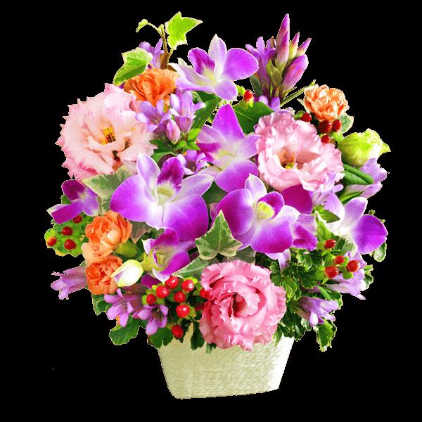 長寿と健康を願う花 敬老の日りんどうのギフト|花キューピットの敬老の日におすすめ!人気のプレゼント特集 2019