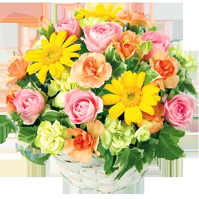 秋生まれの方に贈る花 秋の誕生日|花キューピットの秋の花贈りギフトおすすめギフト 2019