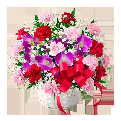 スペシャルフラワー WEB限定デザイン |母の日プレゼント特集2019