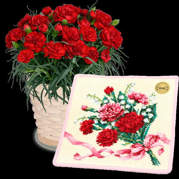 花キューピットの母の日 お花と雑貨のセット特集