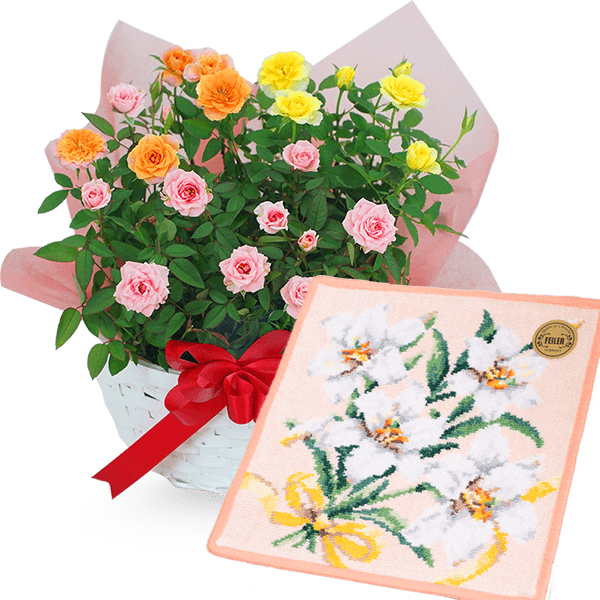 お花と雑貨のセット|花キューピットの敬老の日におすすめ!人気のプレゼント特集 2021