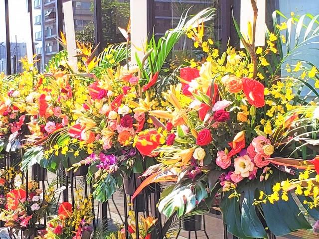お祝いにお花を贈る時~喜ばれる理由とスタイル~
