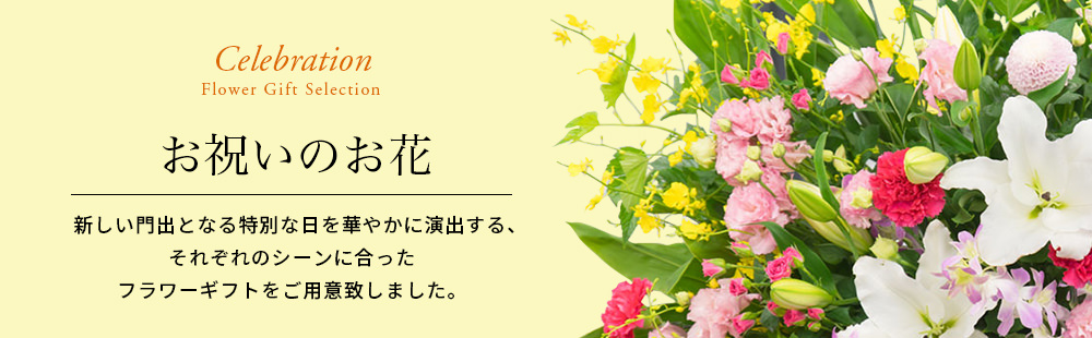 お祝いの花(法人用)