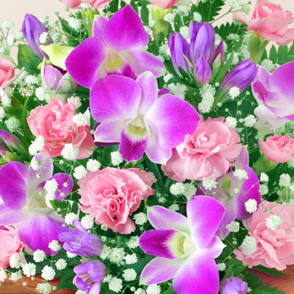 【敬老の日フラワー ランキング】ピンクデンファレのアレンジメント目上の方へ贈りたい、気品のある落ち着いたデザイン