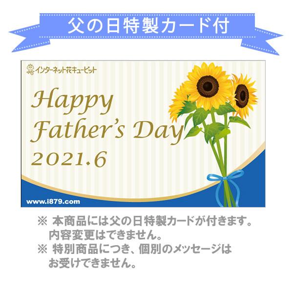 【父の日産直ギフト】フェアリーアイ(ブルー) お父さんと乾杯セットあじさいを見ながら、お父さんとビールで乾杯!