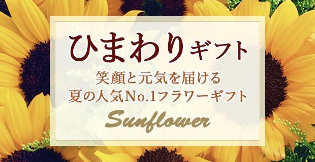 夏の花・ひまわりの花言葉やお手入れ方法をご紹介