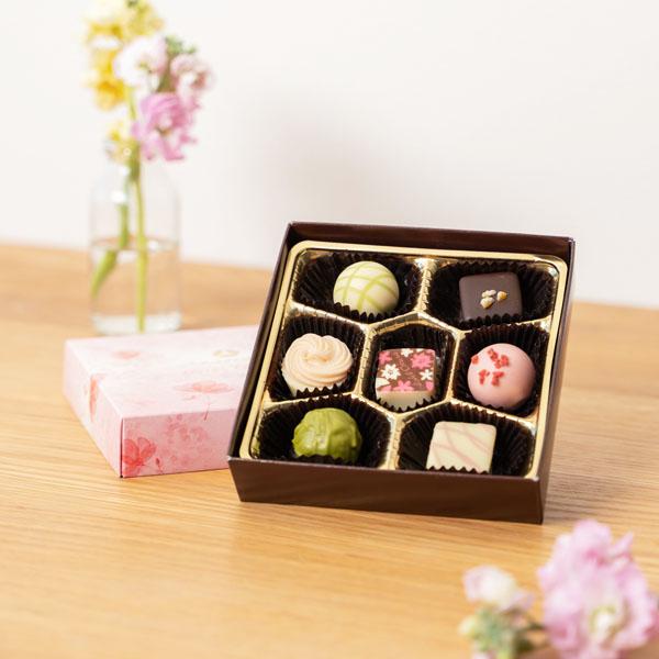彩り豊かなショコラ7個セット
