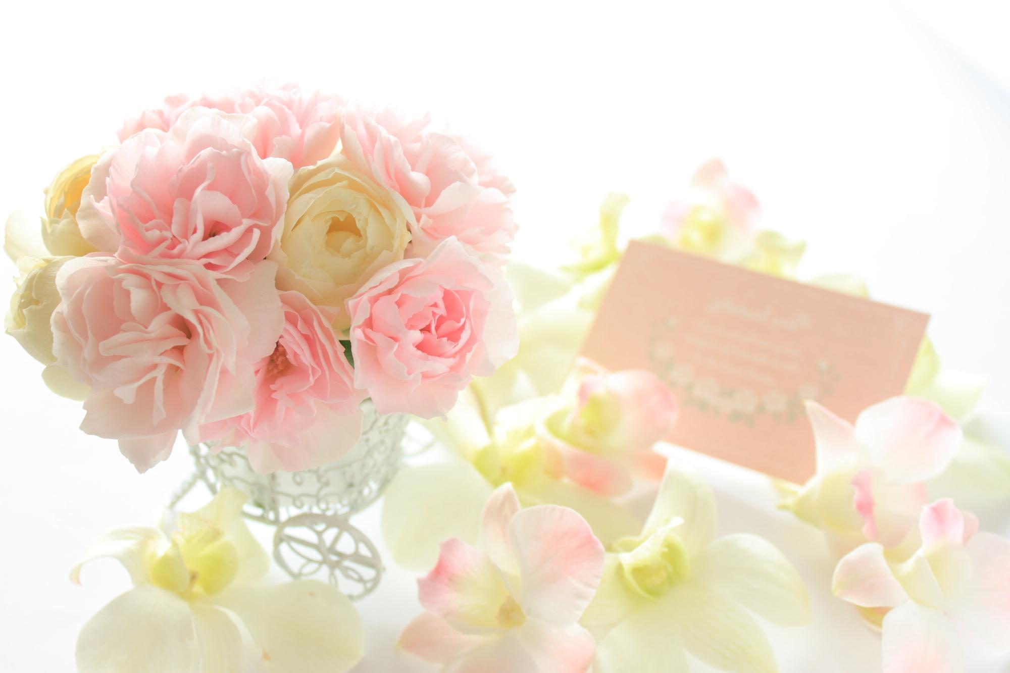 5月の誕生花の花言葉や育て方
