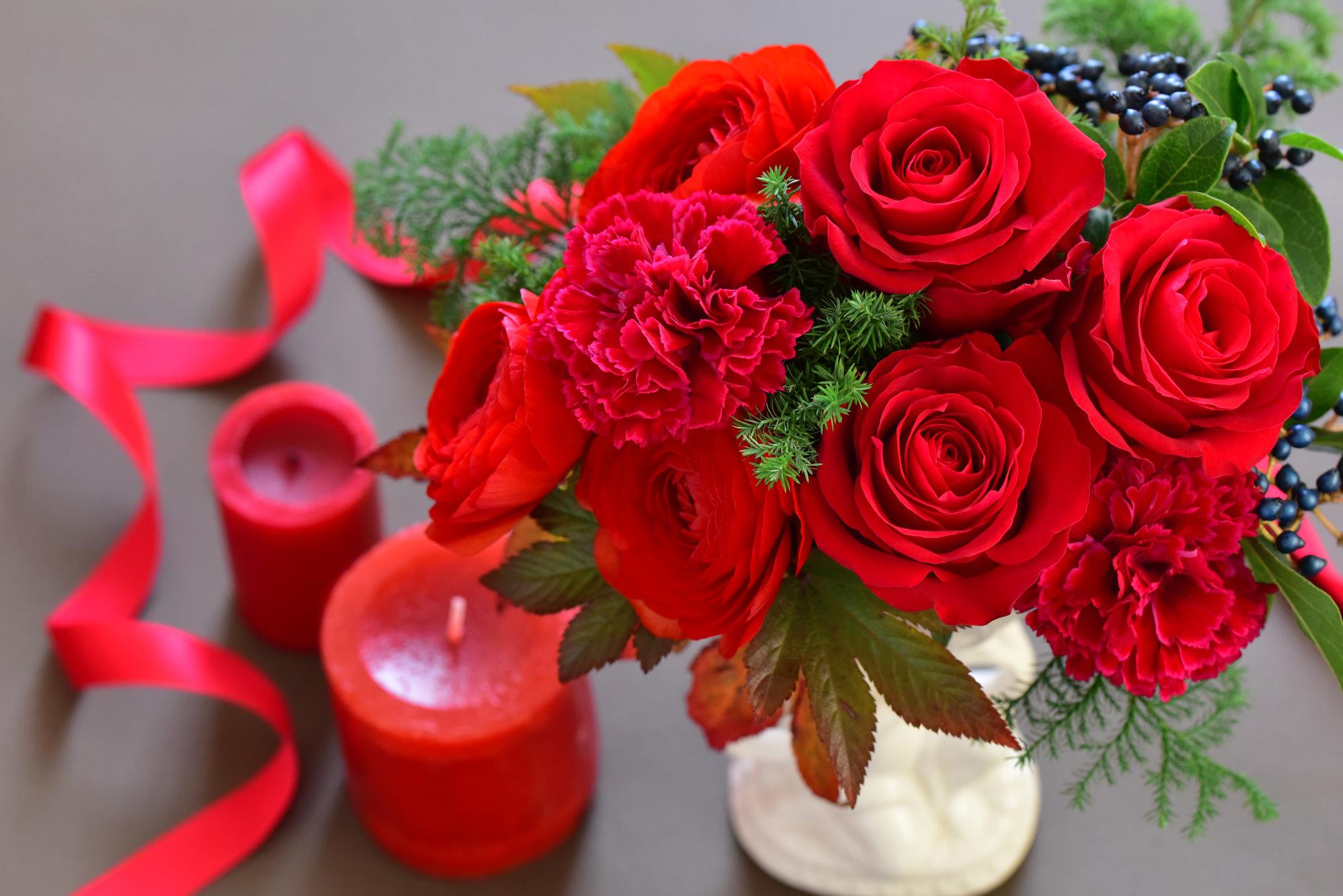 12月の誕生花の花言葉や育て方