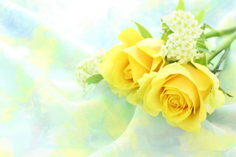父の日プレゼントとして大人気!バラの花束の上手な飾り方