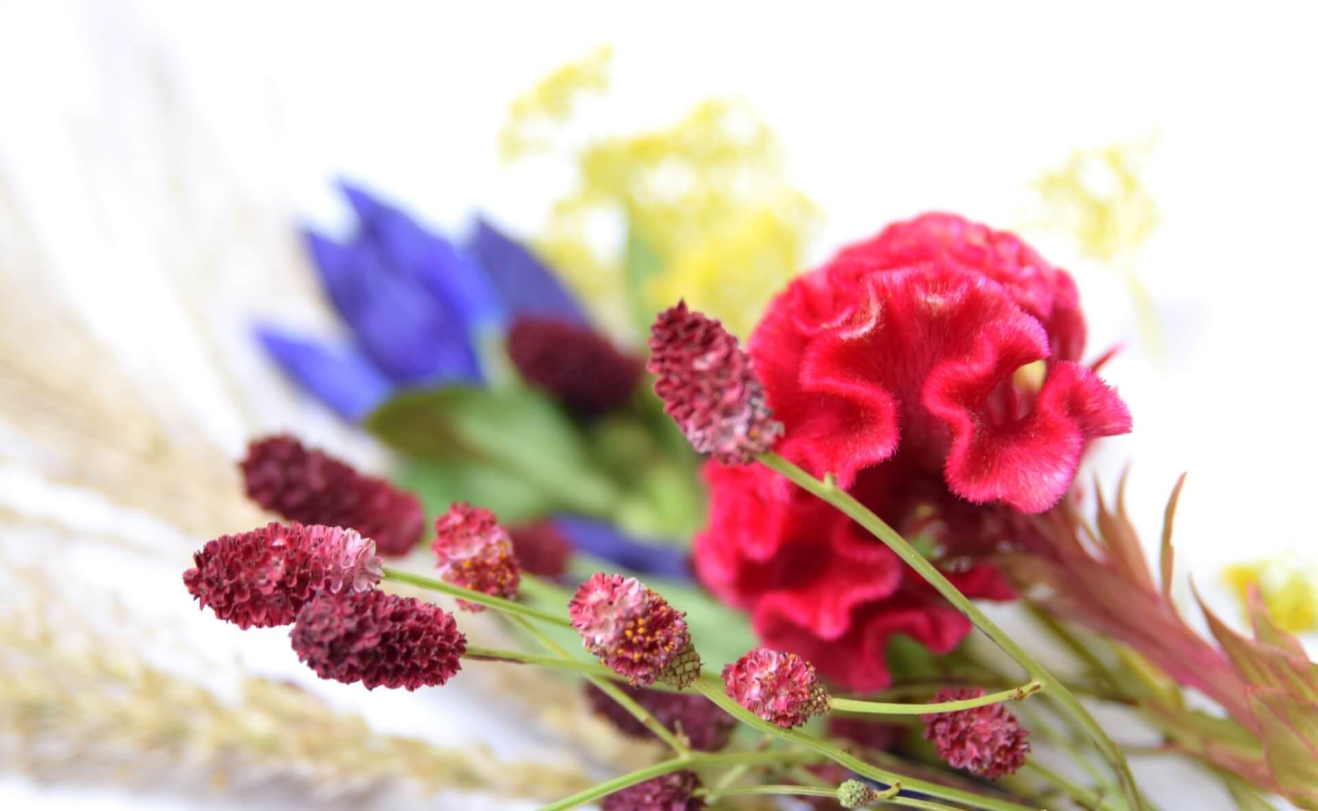 敬老の日人気No.1!お花のギフト|敬老の日 コラム
