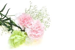 天国の亡き母へ|母の日 コラム