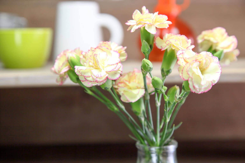 より映えるのはどこ? お花を飾りたい場所3選