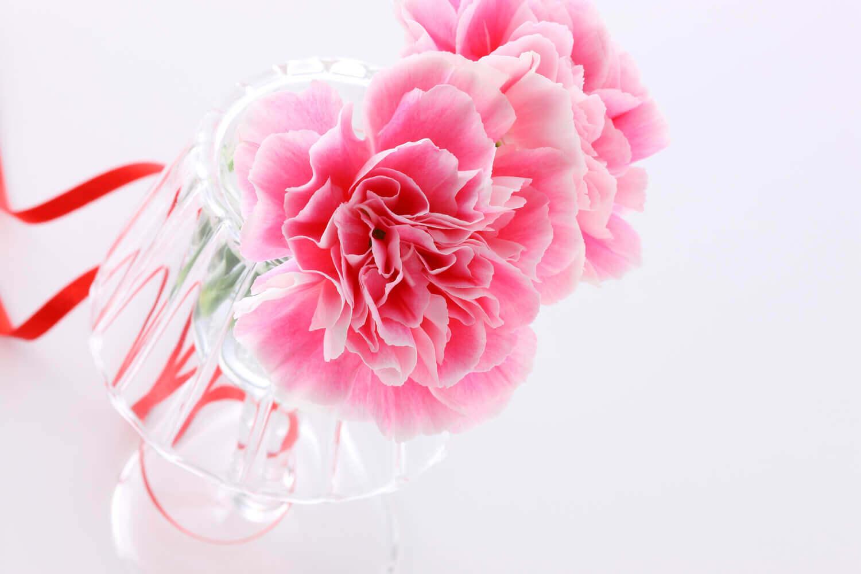 水だけではなく花瓶もチェック!花瓶の正しい洗い方