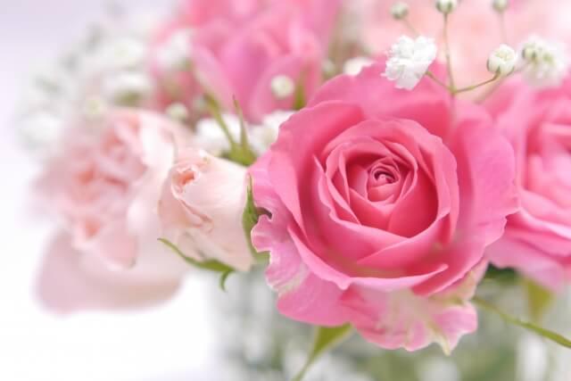 バラってどんな花?