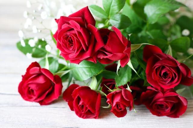 本数で変わる⁉バラを贈る時の意味